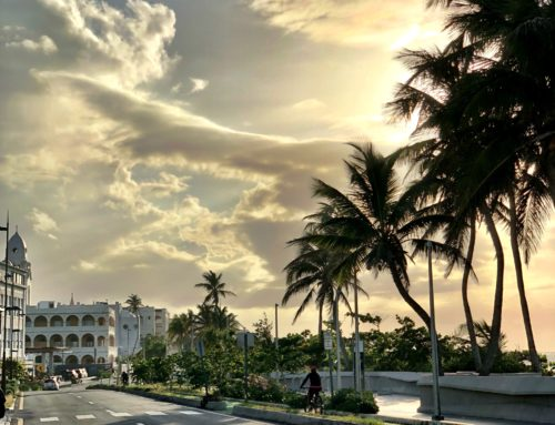 Why I Chose Makita for Disaster Relief in Puerto Rico